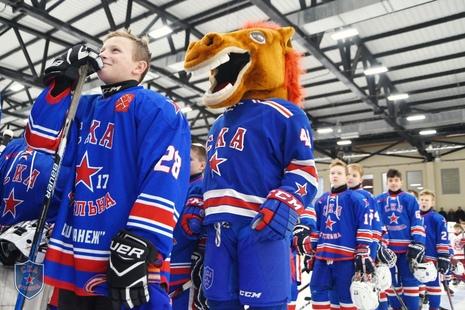 """Юные хоккеисты разыграли """"Золотой шлем"""""""