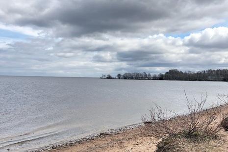 Можно ли организовать зону отдыха на берегу Финского залива в Ломоносове?